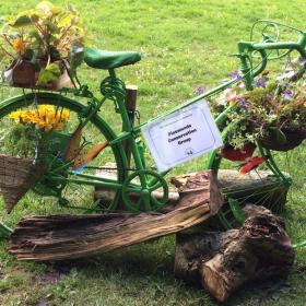 "The Pinewoods ""Tour De France"" Decorated Bike"
